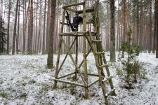 zolomza-md-2016-01-16--polowanie-orl-w-rajgrodzie-079